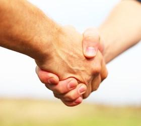 Partner werden